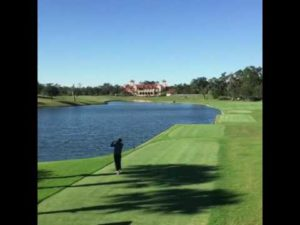Golfer Kills Bird With Golf Ball